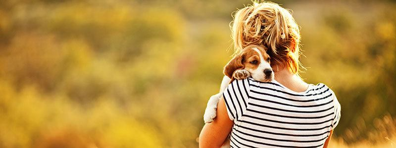 Pet friendly apartments in Hillsboro OR