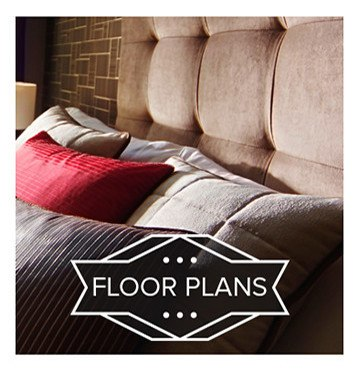 Check out Alexis at Town East's floor plans