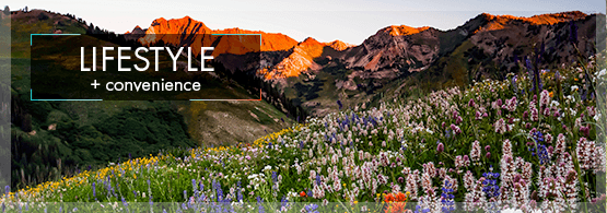 Apartments For Rent In East Sandy Ut Alpine Meadows
