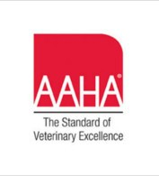 AAHA accredited Wheaton Animal Hospital