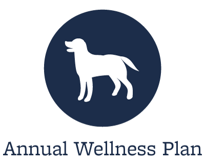 Animal Hospital wellness plans offered in Tempe