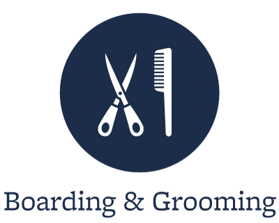 Boarding and grooming at our animal hospital in Tempe