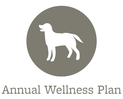 Wellness Plans at our animal hospital in Sioux City