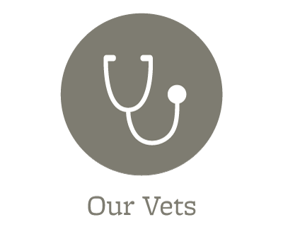 Our veterinarians at Sioux City Animal Hospital