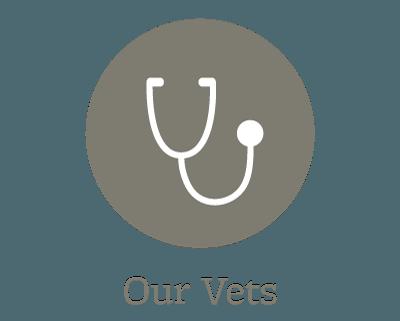 Our animal hospital veterinarians in Minooka