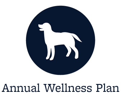 Wellness Plans at our animal hospital in Lakewood