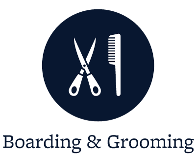 Grooming for your pets in Lakewood