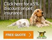 Pets Best in Scottsdale, AZ