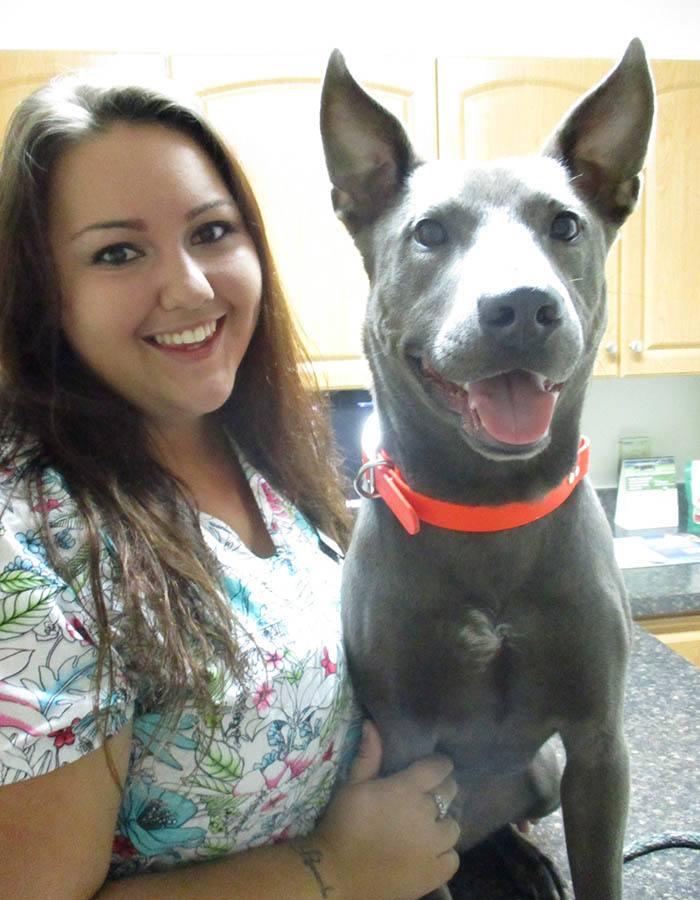 Haley Anne Hurd at Cortez animal hospital