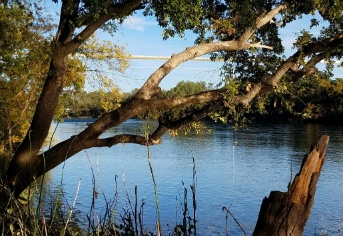 River Commons Senior Living