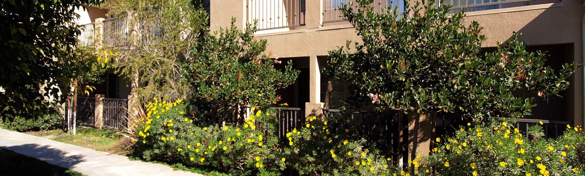Learn about our neighborhood at Cypress Villas Apartment Homes in Redlands, CA on our website