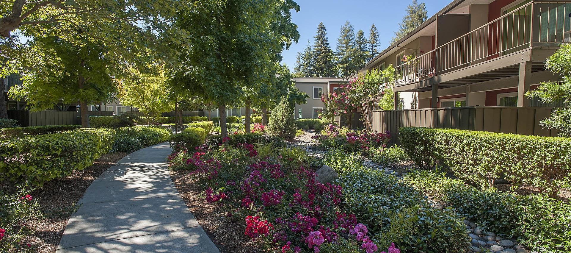 Lovely Courtyards at Flora Condominium Rentals in Walnut Creek