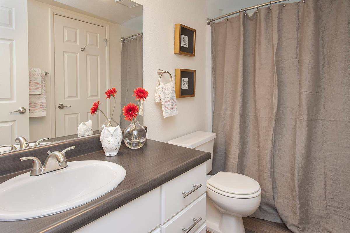 Luxury 1 2 bedroom apartments in sacramento ca - Nicely decorated bathrooms ...