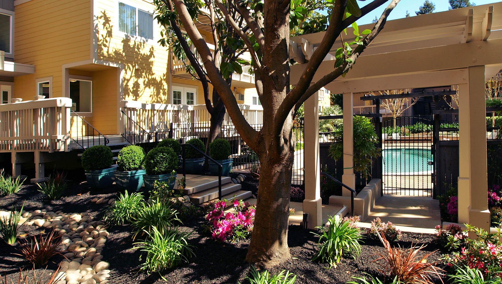 Apartments in Martinez, CA